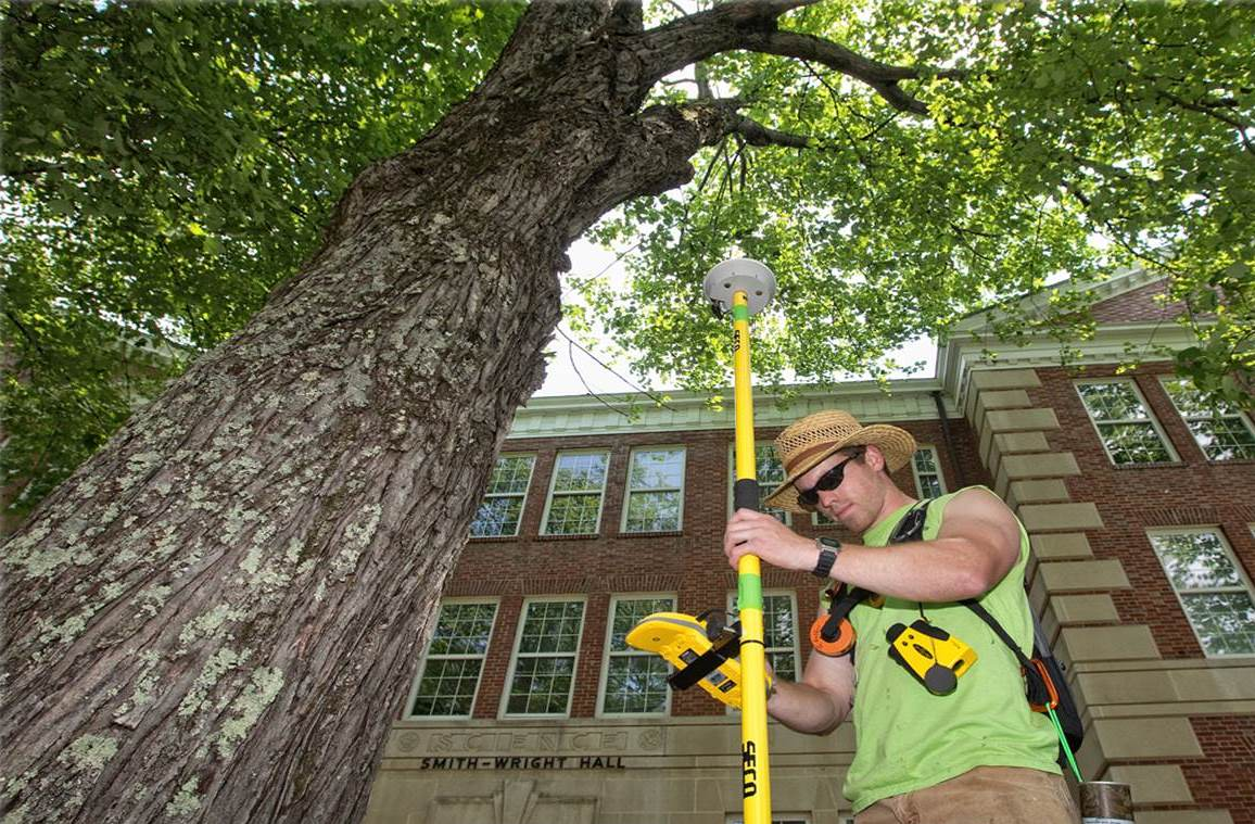 Arborist Consultations-Poway CA Tree Trimming and Stump Grinding Services-We Offer Tree Trimming Services, Tree Removal, Tree Pruning, Tree Cutting, Residential and Commercial Tree Trimming Services, Storm Damage, Emergency Tree Removal, Land Clearing, Tree Companies, Tree Care Service, Stump Grinding, and we're the Best Tree Trimming Company Near You Guaranteed!