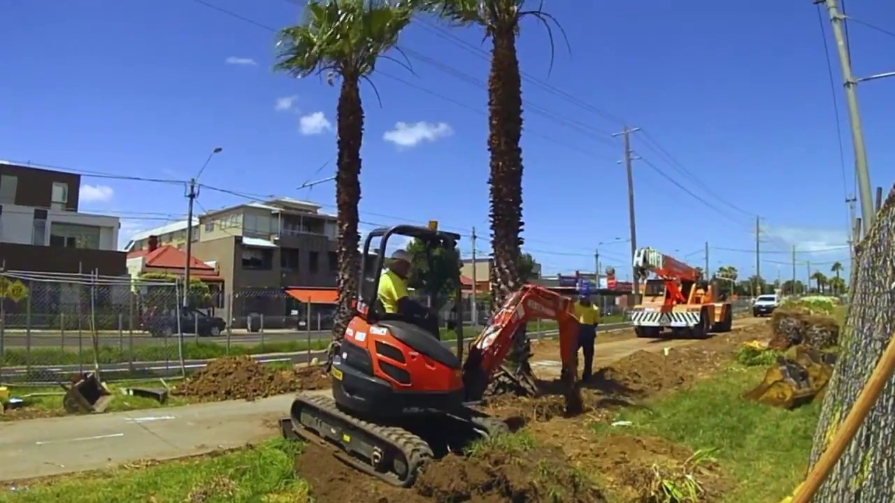 Palm Tree Removal-Poway CA Tree Trimming and Stump Grinding Services-We Offer Tree Trimming Services, Tree Removal, Tree Pruning, Tree Cutting, Residential and Commercial Tree Trimming Services, Storm Damage, Emergency Tree Removal, Land Clearing, Tree Companies, Tree Care Service, Stump Grinding, and we're the Best Tree Trimming Company Near You Guaranteed!