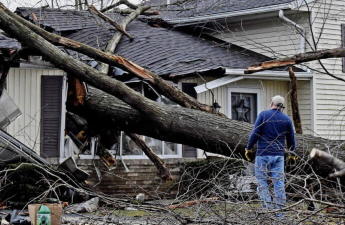 Storm Damage-Poway CA Tree Trimming and Stump Grinding Services-We Offer Tree Trimming Services, Tree Removal, Tree Pruning, Tree Cutting, Residential and Commercial Tree Trimming Services, Storm Damage, Emergency Tree Removal, Land Clearing, Tree Companies, Tree Care Service, Stump Grinding, and we're the Best Tree Trimming Company Near You Guaranteed!